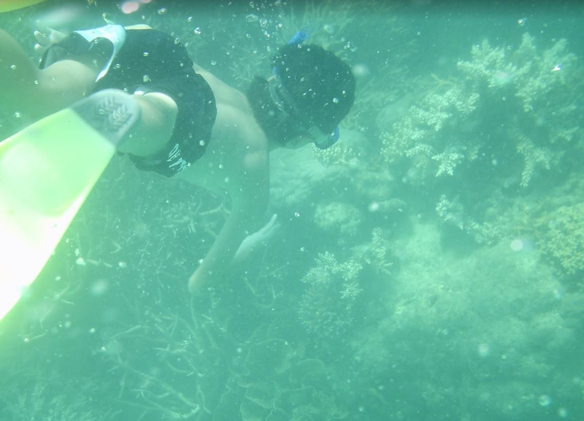 Son's first snorkel with Mission Beach Dive
